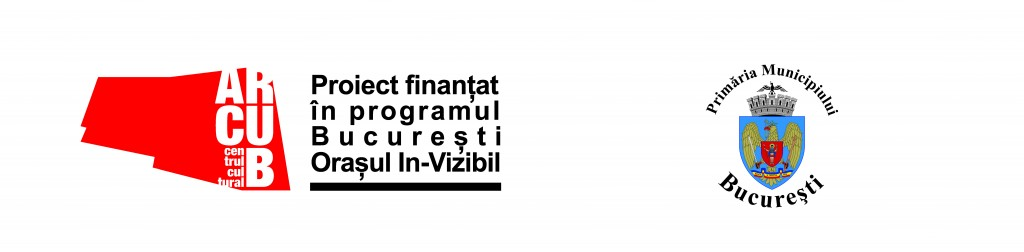 arcub-in-vizibil-finantare-pmb